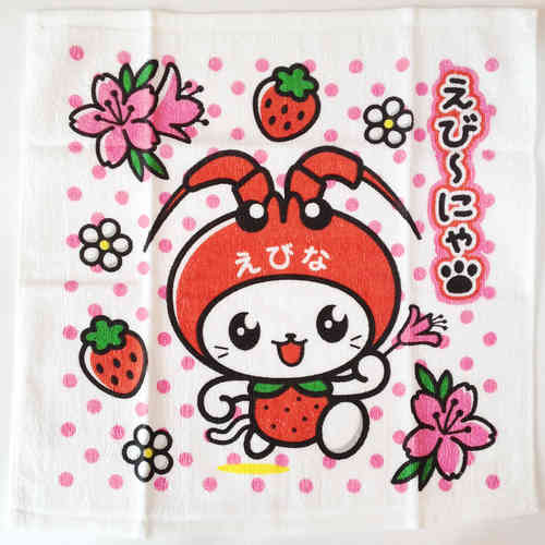 EBINYA small towel